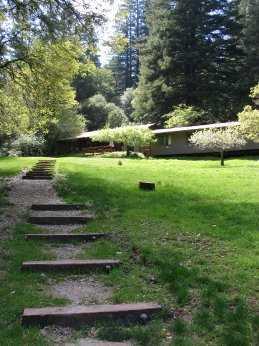 orchard-path